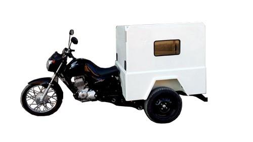 Triciclo de carga pet shop